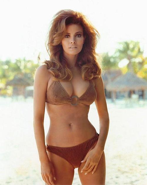 Raquel Welsh Celebrities at